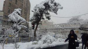 بارش برف تهران را سفید پوش کرد.